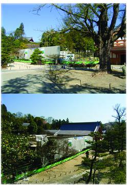 虎渓山永保寺から春をお届けします。_f0073301_16575279.jpg