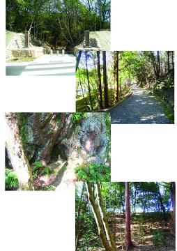 虎渓山永保寺から春をお届けします。_f0073301_17223091.jpg