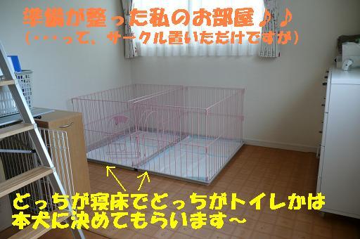 f0121712_22491360.jpg