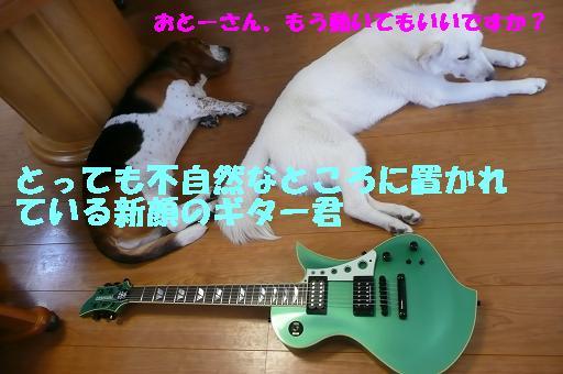 f0121712_22512932.jpg