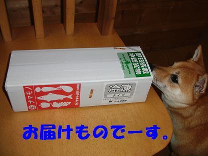 b0150665_203741100.jpg