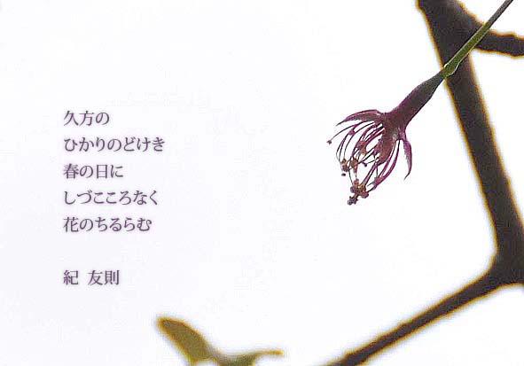 f0198771_0353849.jpg