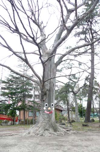 大きな木の下で!_f0150893_184739.jpg