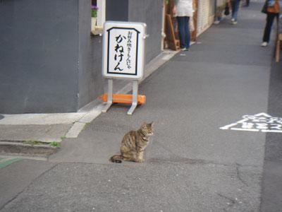 ブログ小休止_c0077407_2317453.jpg