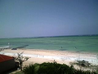 沖縄からの便り~ from はなちゃん_e0092612_814564.jpg