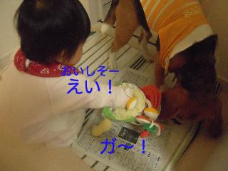 b0104420_737149.jpg