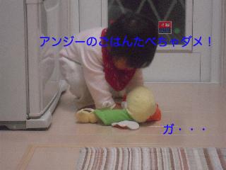 b0104420_737181.jpg