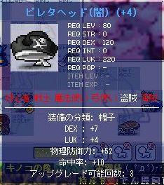 f0101435_21284061.jpg
