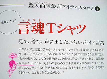 【豊天商店 スペシャルブック2009】 掲載 _c0141944_1794812.jpg