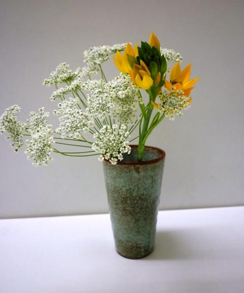 春のさしいれ…_b0093660_0372658.jpg