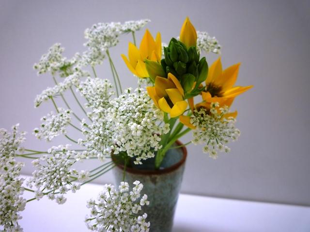 春のさしいれ…_b0093660_0401178.jpg