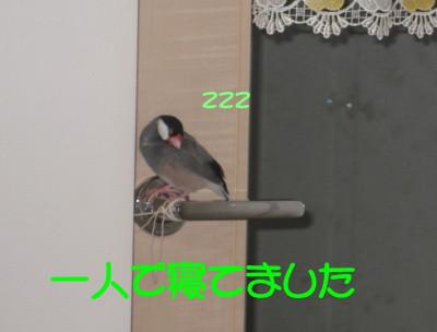 b0158061_19561553.jpg