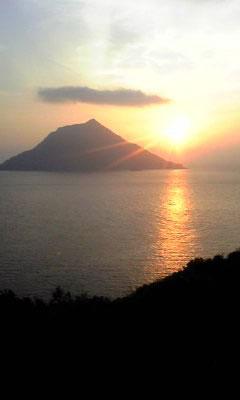 スカシ・LAユリ&シャメで撮った夕陽_e0097770_22452396.jpg