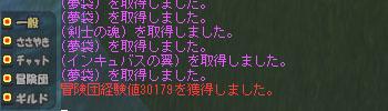 b0128157_0384556.jpg
