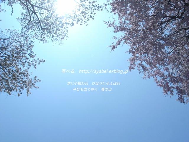 c0153764_17434854.jpg