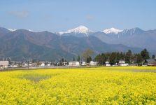 安曇野の春風景_c0094442_1044166.jpg
