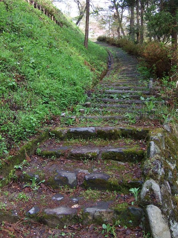 鍋倉山のカーブ階段。_d0001843_2311391.jpg