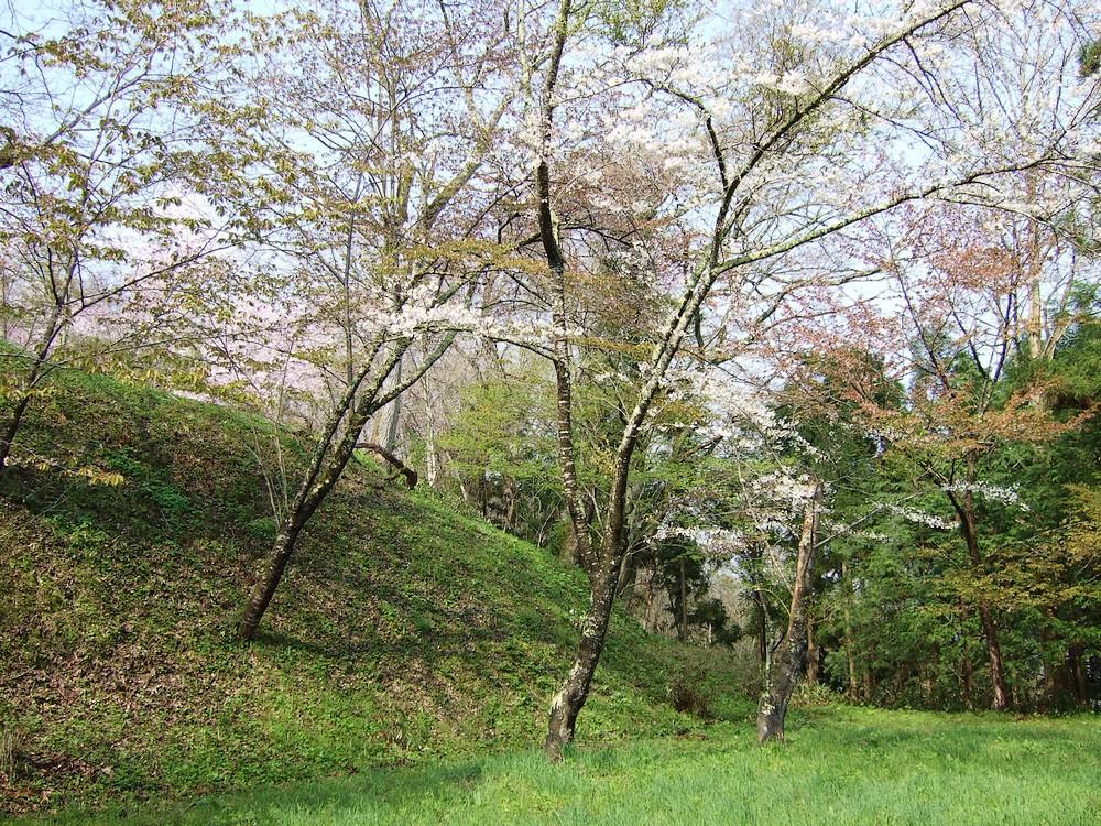 鍋倉山のカーブ階段。_d0001843_23331713.jpg