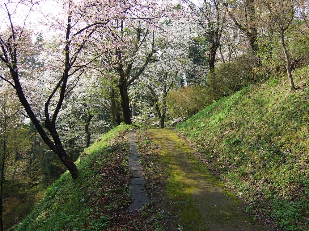 鍋倉山のカーブ階段。_d0001843_23335139.jpg