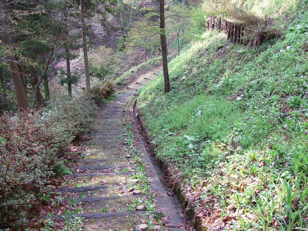 鍋倉山のカーブ階段。_d0001843_2335661.jpg