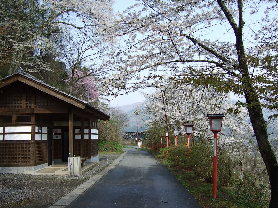 鍋倉山のカーブ階段。_d0001843_23361668.jpg