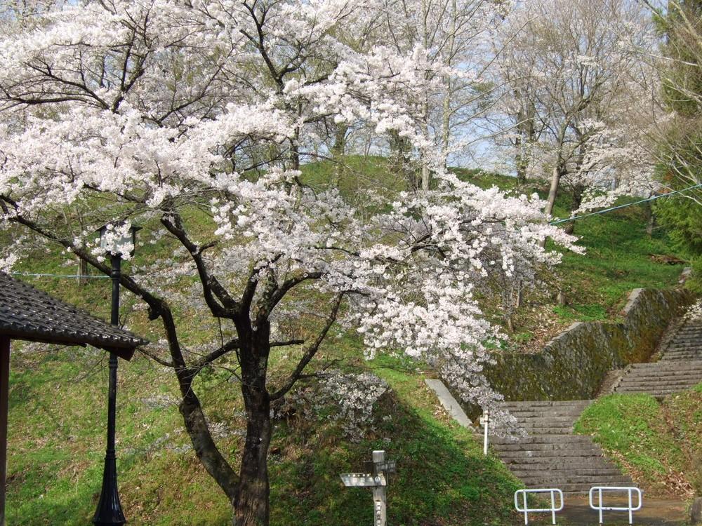 鍋倉山のカーブ階段。_d0001843_23413680.jpg