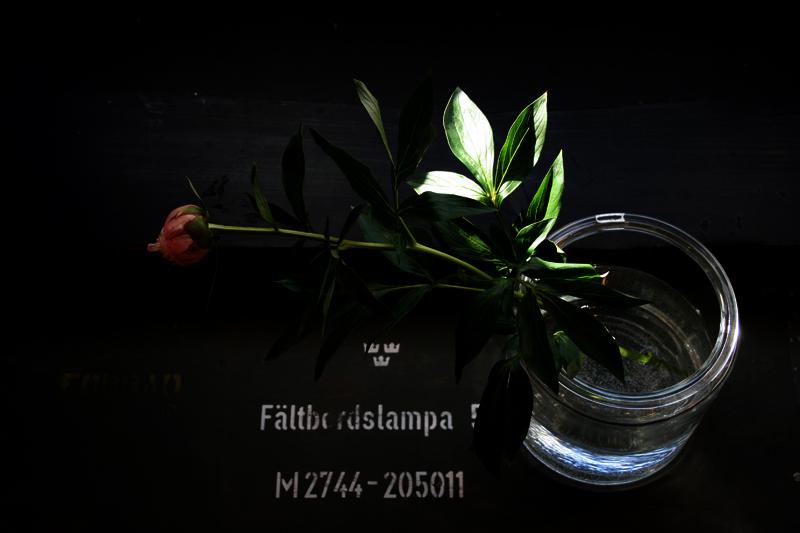 b0075366_16575824.jpg