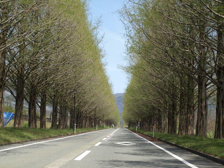 琵琶湖ツーリング_f0097683_22375150.jpg