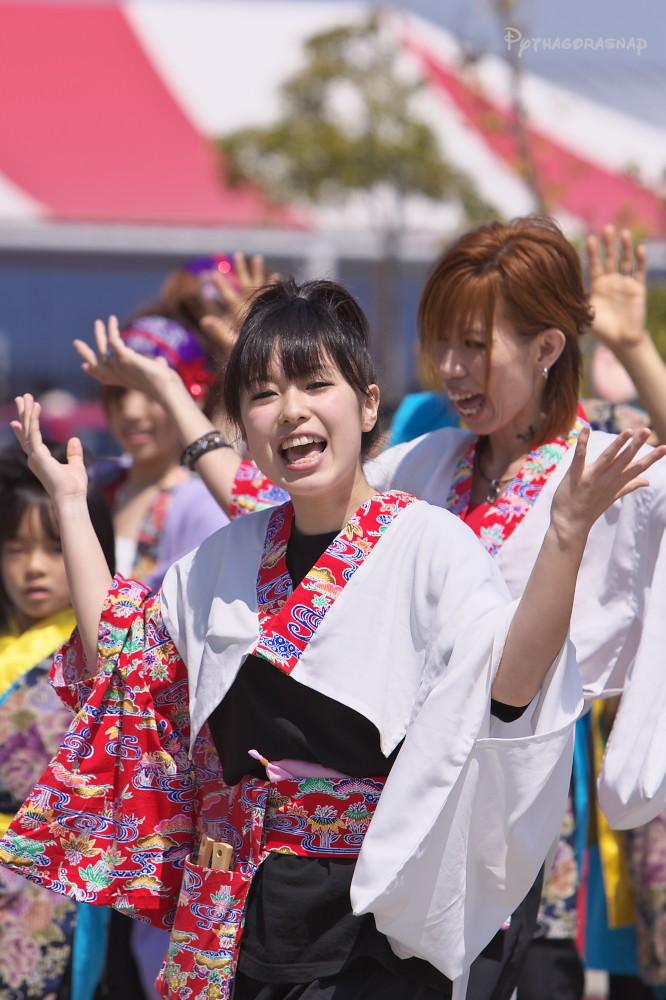 舞っとこ刈谷 2009:その6(最終回)_c0187584_3443866.jpg