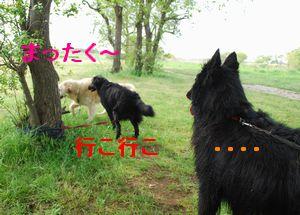 f0109202_22164213.jpg