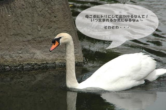 f0012718_20402265.jpg