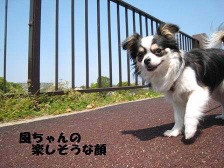 f0188830_20111262.jpg