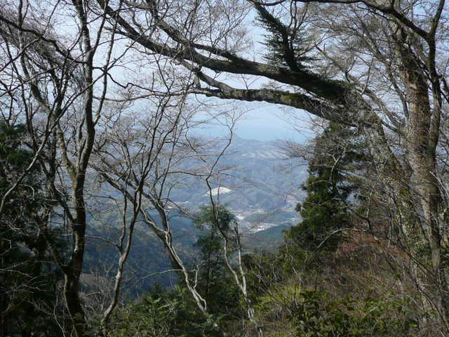 標高 約800メートルの山を歩いて、野の花を愛でました♪_f0099147_093669.jpg