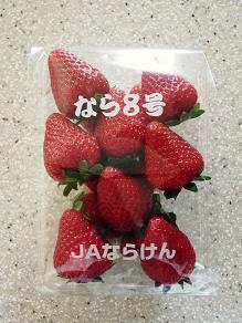 奈良8号_f0134268_1517529.jpg