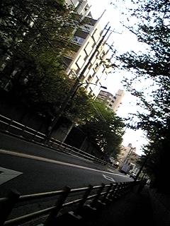 d0076179_19384557.jpg
