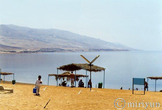 死海の塩分濃度_c0067690_143084.jpg