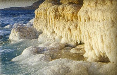 死海の塩分濃度_c0067690_14335284.jpg