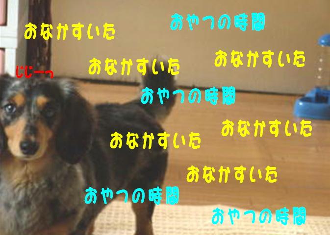 f0195891_17475095.jpg