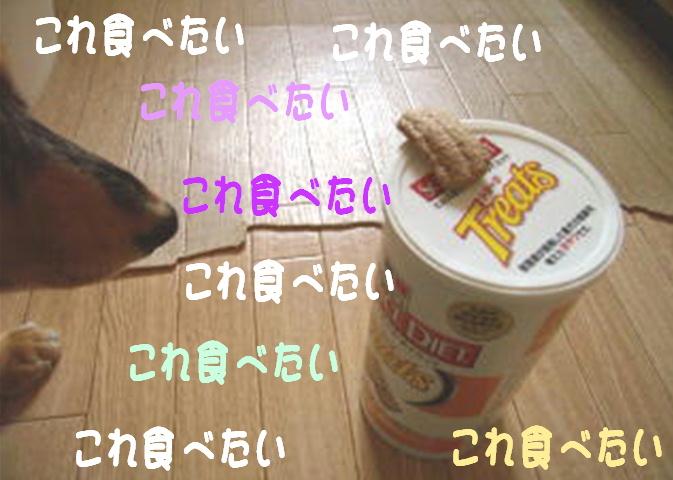 f0195891_1748620.jpg