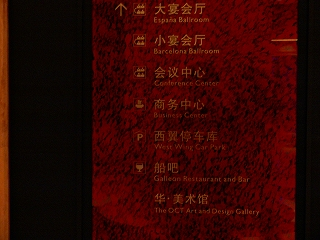 中国出張2009年04月-第二日目-夜はロマンチックに_c0153302_2313225.jpg