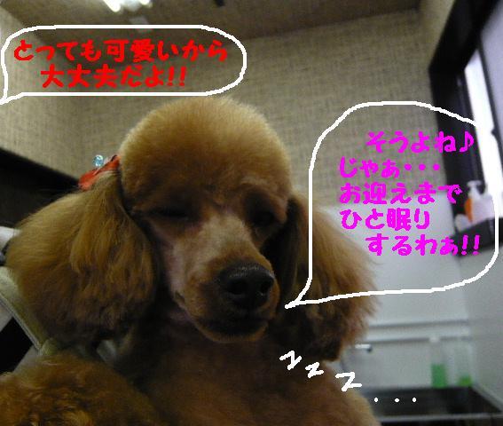 b0130018_10355837.jpg