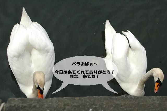 f0012718_110481.jpg