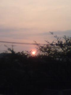 Dawn_f0064823_83859.jpg