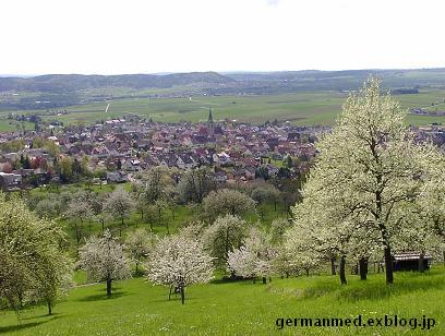 ドイツ春爛漫_d0144726_3375440.jpg
