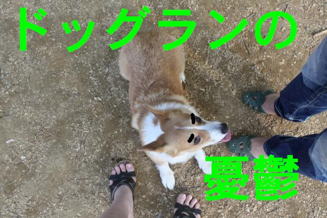 c0173042_1311098.jpg