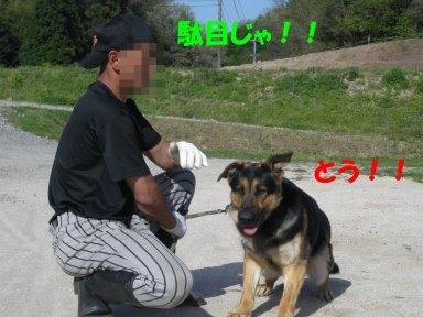 b0113663_100585.jpg