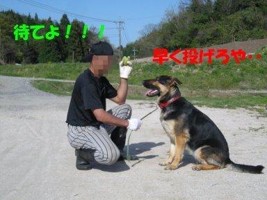 b0113663_959274.jpg