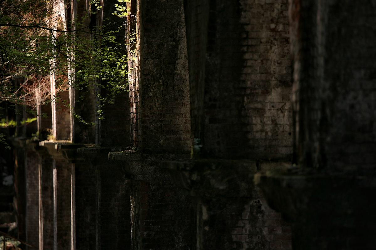 琵琶湖疏水~南禅寺 桜_f0021869_211601.jpg