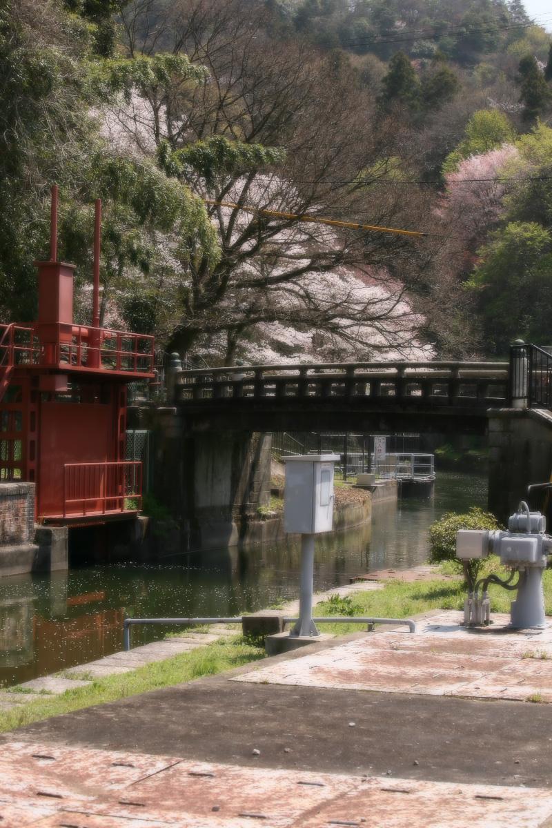 琵琶湖疏水~南禅寺 桜_f0021869_21185289.jpg