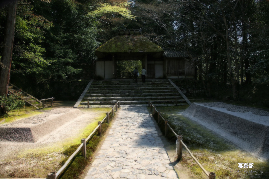 そうだ 京都、行こう。_f0021869_21343357.jpg